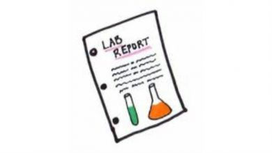 Photo of How to Write a Lab Report Introduction