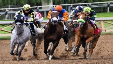 Photo of How Professional Horse Racing Tips Can Help You Win