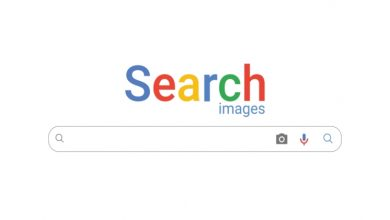Photo of Reverse image search