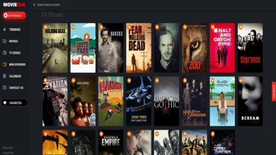 Photo of Moviesflix 2021 – Best Movie & Web Series for Free