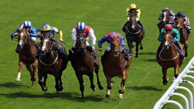 Photo of Horse Racing At The Olympics: What Are The Olympic Equestrian Sports?