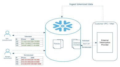 Photo of What Is Snowflake Data Masking? An Insight And Some Benefits.
